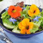 edible pansies in a garden salad