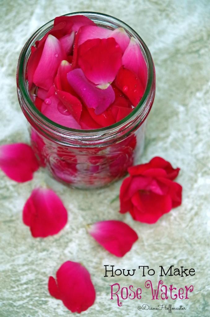 Easy DIY Rose Water