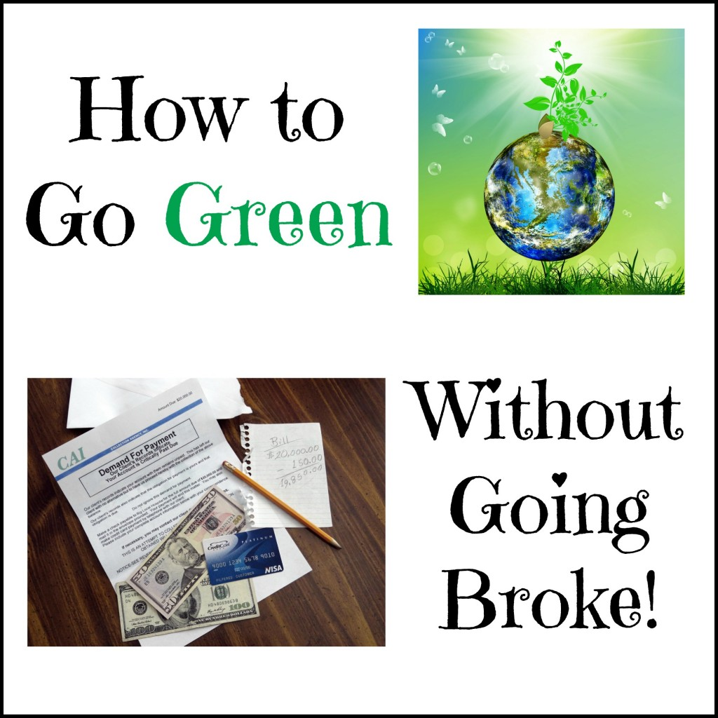 How to Go Green Without Going Broke