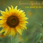10 Summer Garden Projects You Need to do NOW!