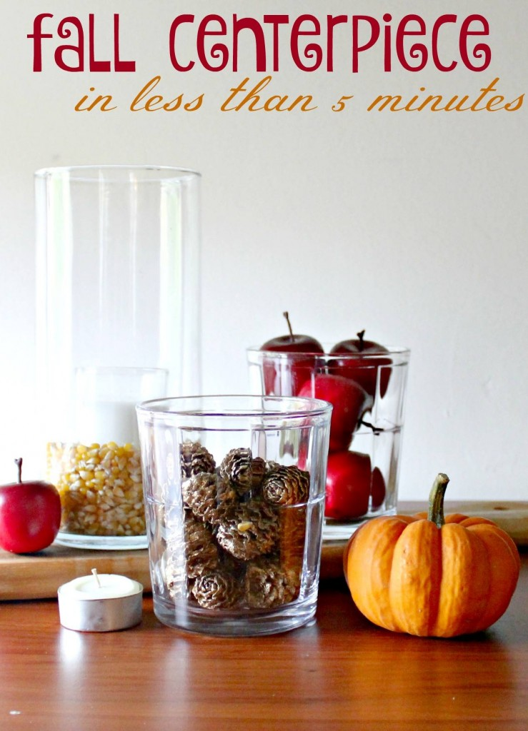 Fall Centerpiece Idea and 10 Things to do with Pine Cones