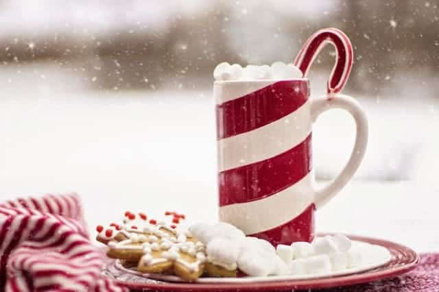 christmas mug and cookies in winter snow