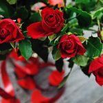 flower arrangement of roses