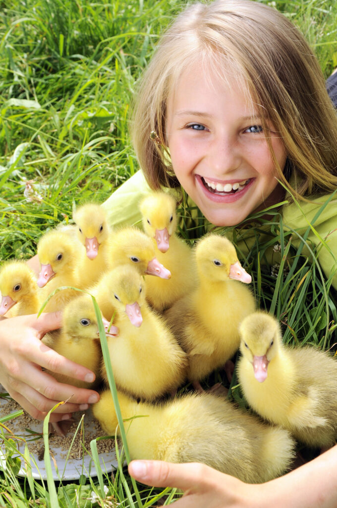 girl in grass with several ducklings