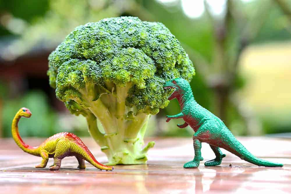Toy dinosaurs eating fresh broccoli to help kids eat healthy foods