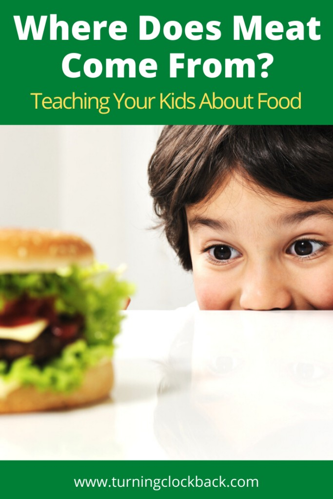 Child looking at burger with text Where Does Meat Come From? Teaching Your Kids About Food