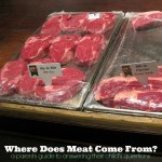 """Where Does Meat Come From?"": How to Answer Your Child's Questions"