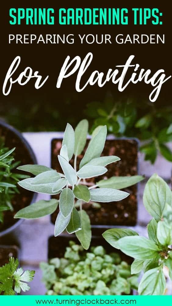 Spring Gardening Tips Preparing Your Garden for Planting