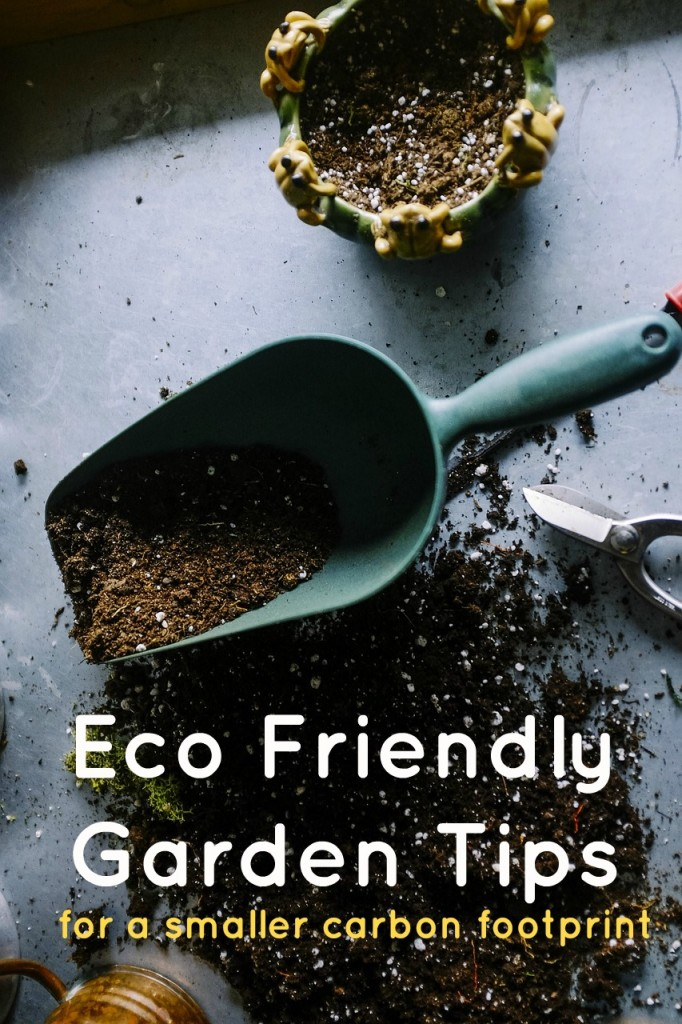 Eco Friendly Garden Ideas for a Smaller Carbon Footprint