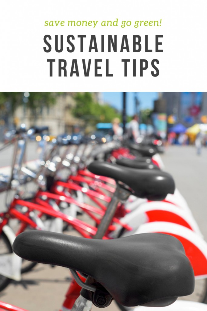 Sustainable Travel Tips to Go Green and Save Money