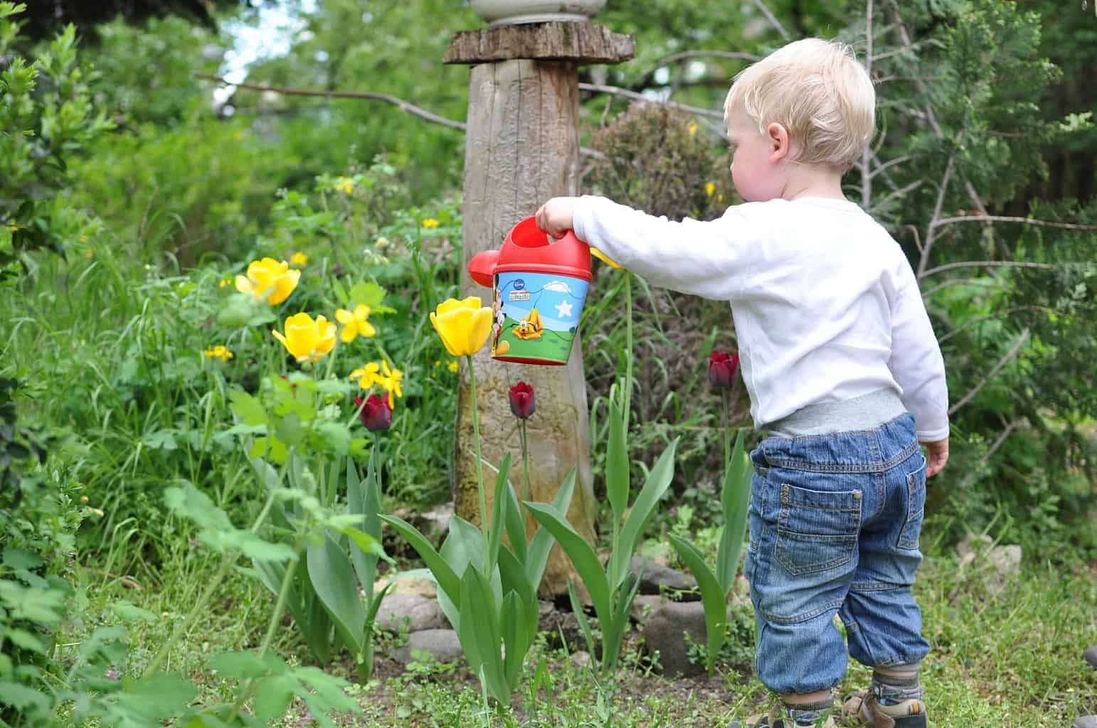 child in a garden watering plants