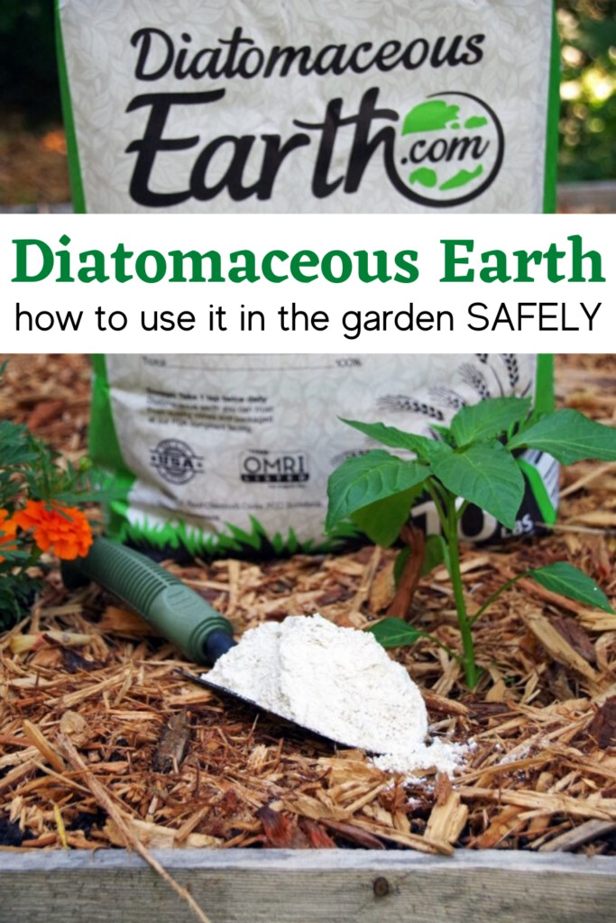Bag of diatomaceous earth in the vegetable garden