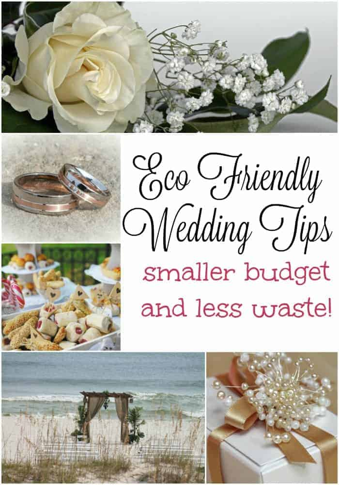 Eco Friendly Wedding Tips for a Smaller Budget and Less Waste