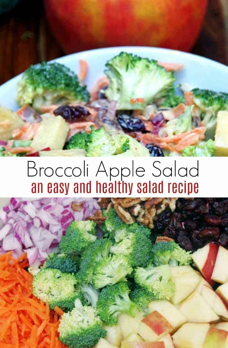Want a quick lunch idea or side dish to bring to a potluck dinner? Try this Creamy Broccoli Apple Salad Recipe with Walnuts. Loads of flavor with plenty of crunch!