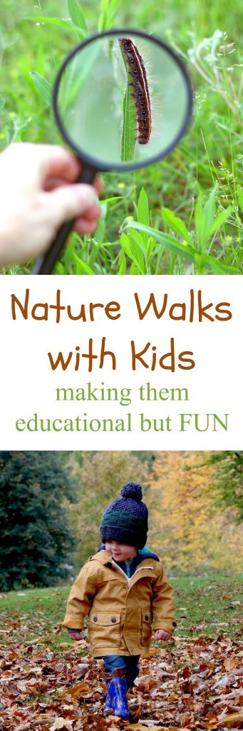Make Nature Walks with Kids More Educational
