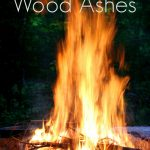 10 Uses for Wood Ash When Your Campfire is Finished!