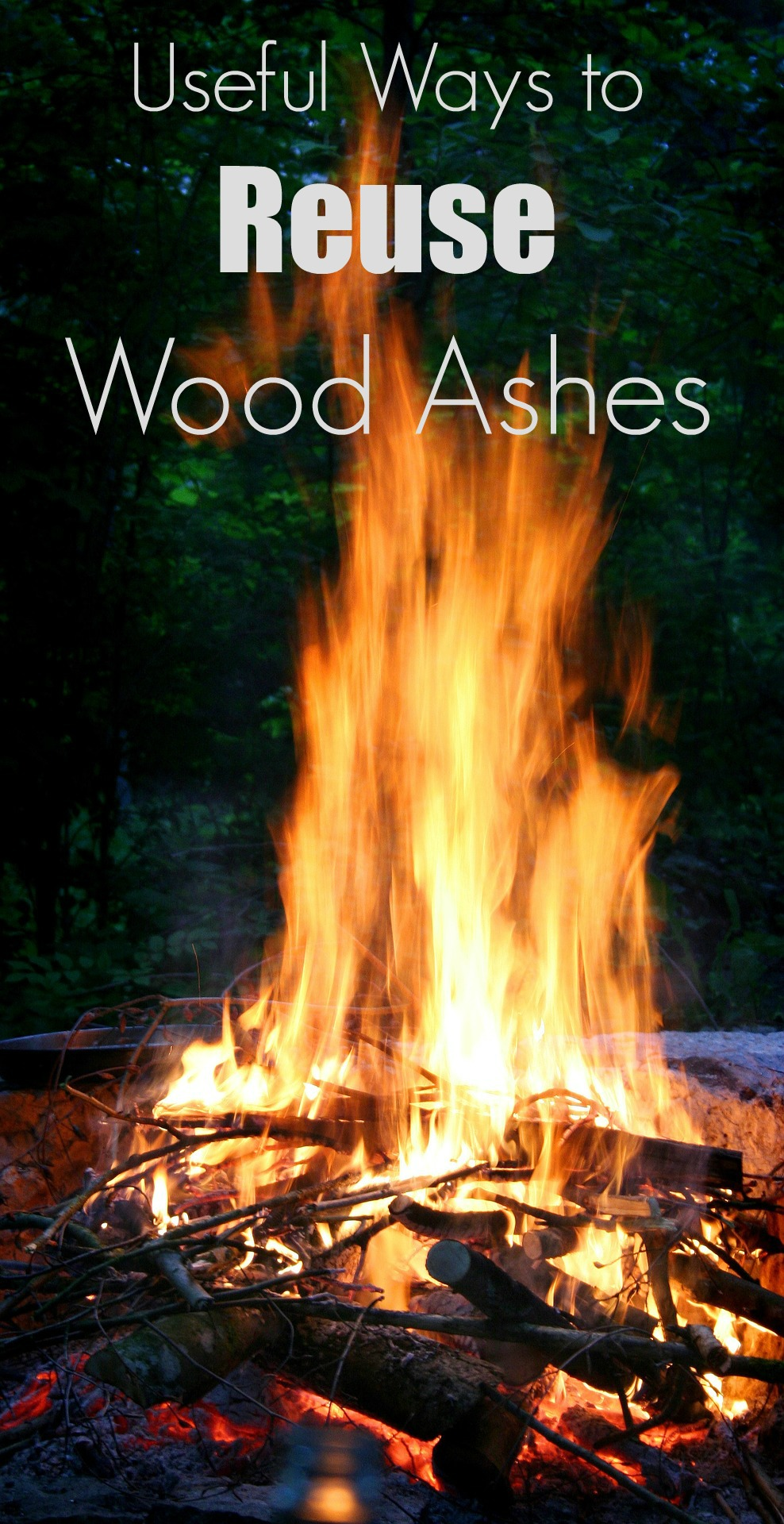 10 uses for wood ash after the campfire is over turning the