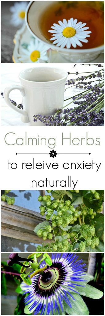 Calming herbs for anxiety when stress gets to be too hard to handle.