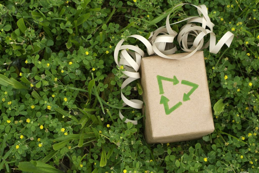 Sustainable Gift Ideas for a Smaller Carbon Footprint
