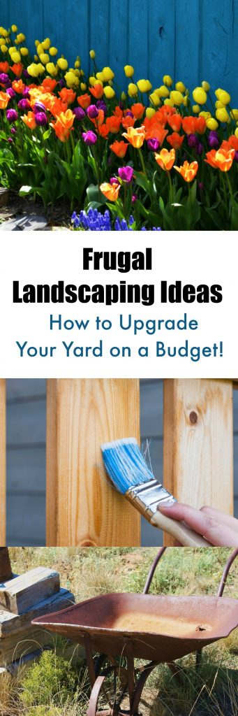 Frugal Landscaping Ideas How to Upgrade Your Yard on a Budget. Frugal Landscaping Ideas  How to Upgrade Your Yard on a Budget