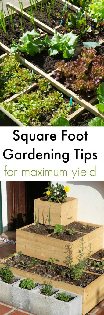 Like These Square Foot Gardening Tips? Pin For Later!