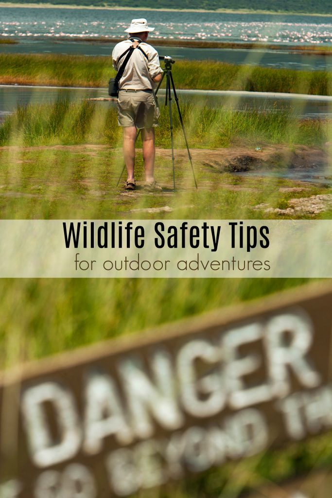 Wildlife Safety Tips for Outdoor Family Vacations