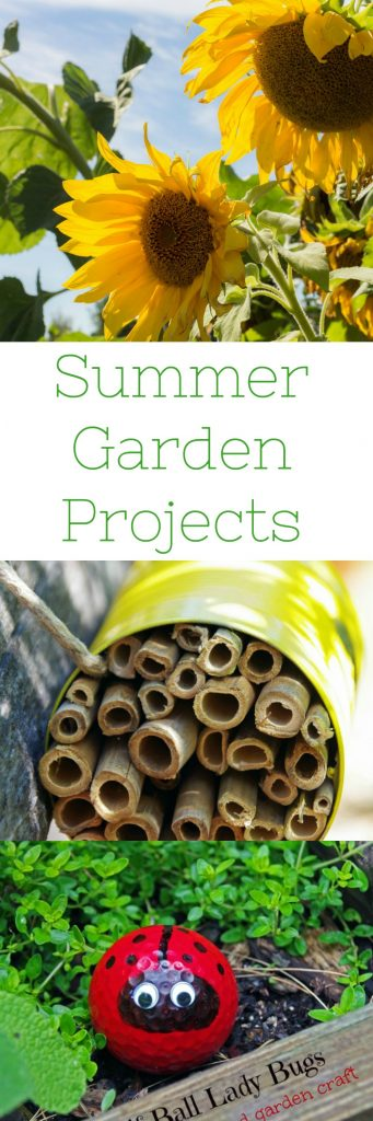 Looking for a few garden projects to beautify your growing space? Here are a few summer garden projects that will boost yield and beautify your garden!
