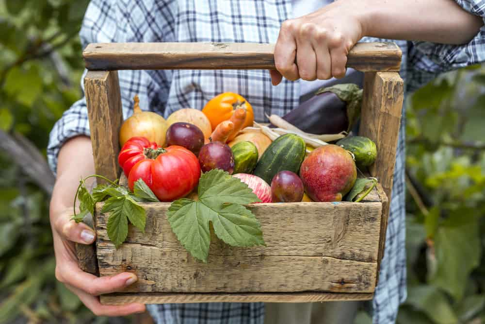 DIY wood garden basket filled with produce