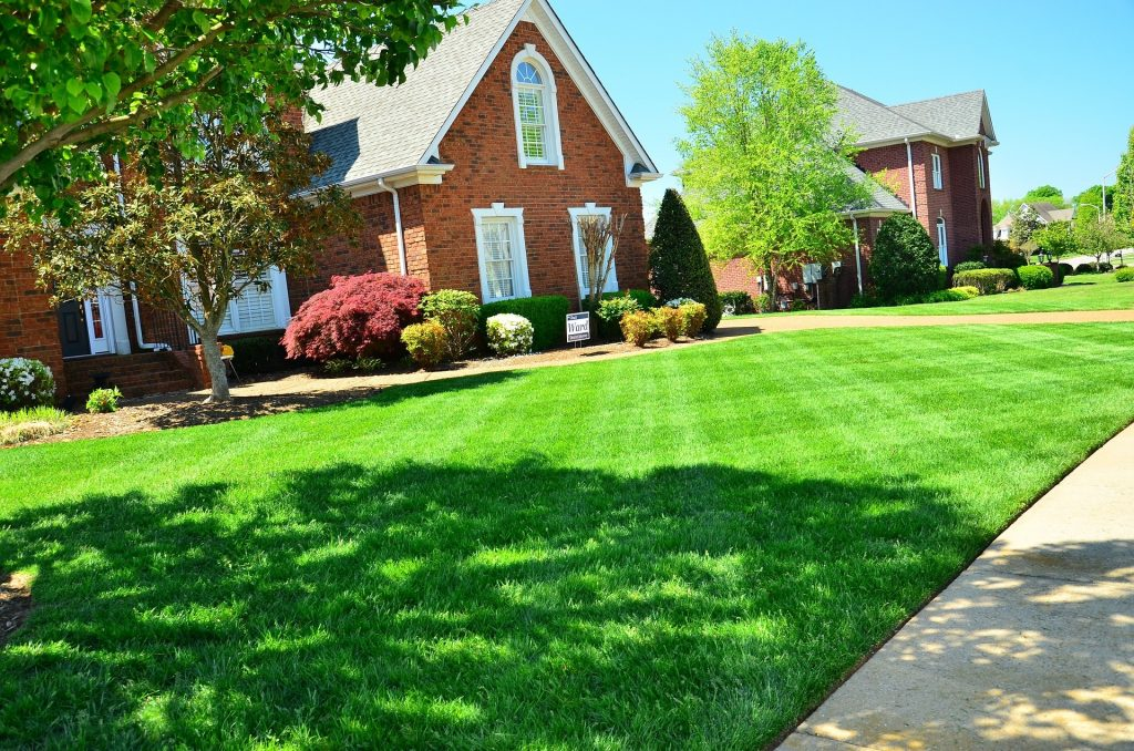 Grass Cutting Tips for a Green and Healthy Lawn