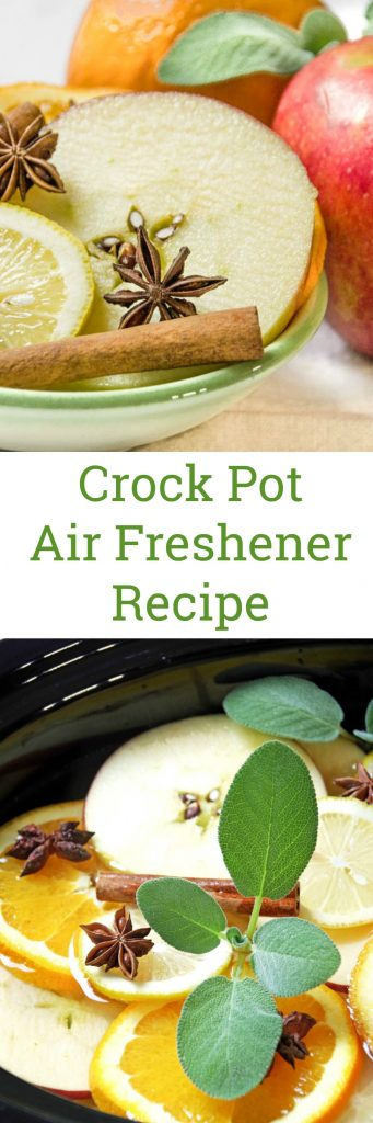 Crock Pot Air Freshener Recipe Perfect for Fall