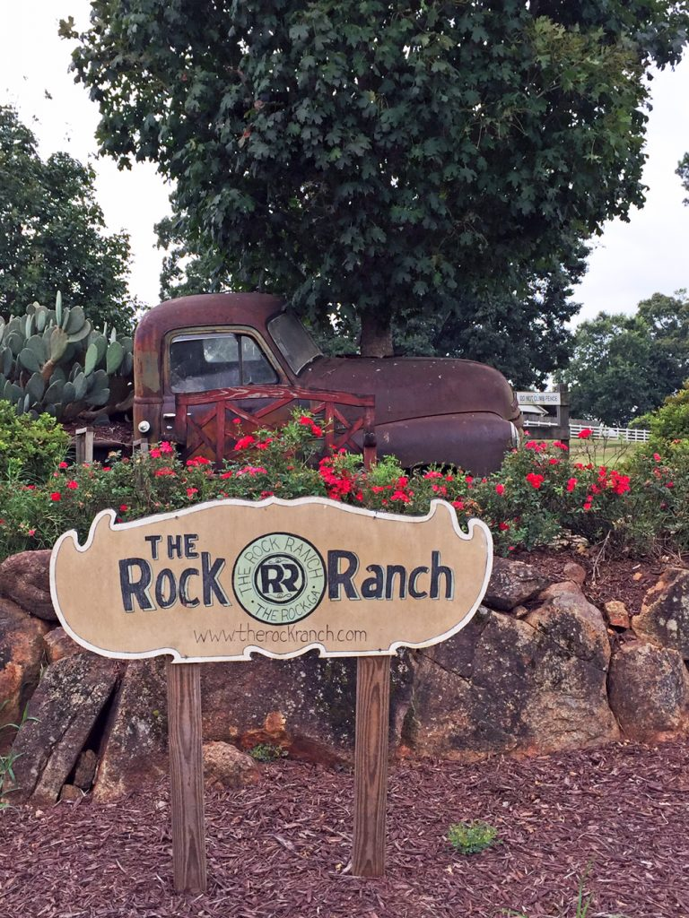 The Rock Ranch, How to Support Local Farmers and my Georgia Agritourism Experience