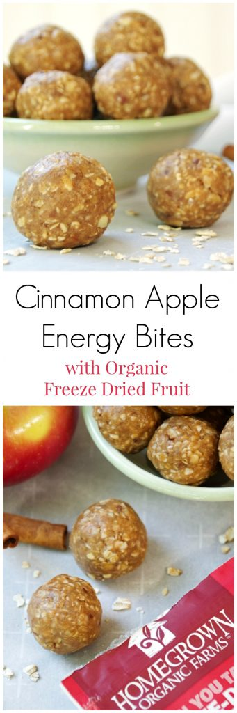 Cinnamon Apple Energy Bites with Organic Freeze Dried Fruit