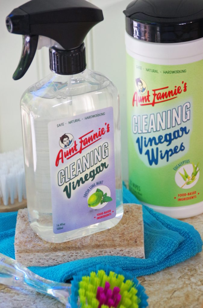 DIY Kitchen Sponge Dish and Healthier Housekeeping with Aunt Fannie's #HomeSweetBiome #HealthierHousekeeping and #PlantBased #NaturalCleaning