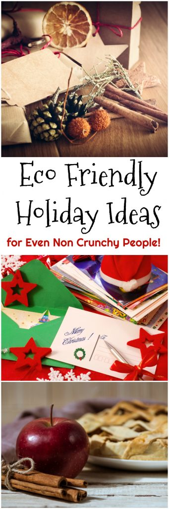 Eco Friendly Holiday Ideas for Even Non Crunchy People!