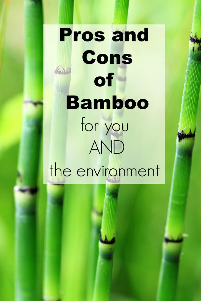 Pros and Cons of Bamboo for Both You and the Environment