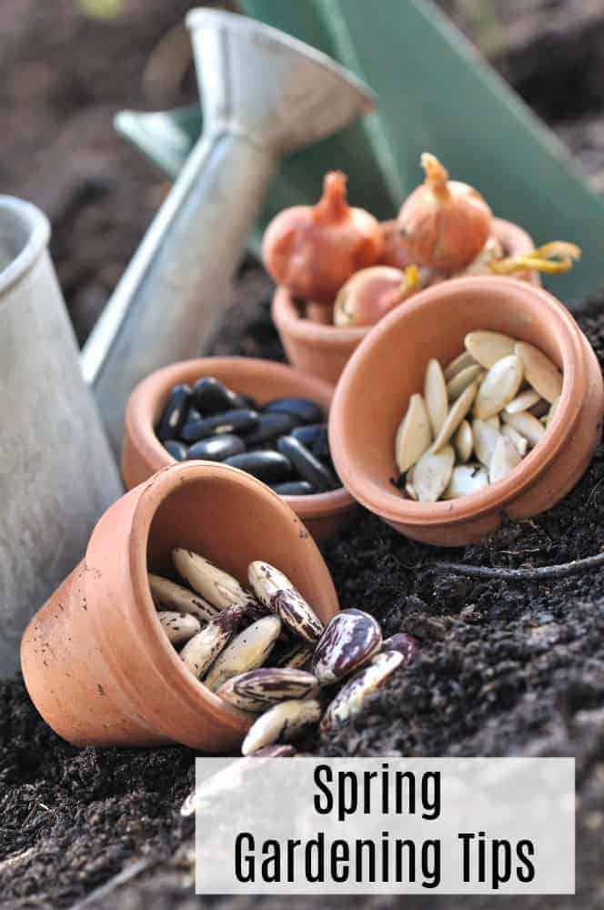 Preparing Your Garden for Spring Planting