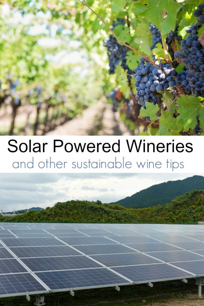 The Solar Powered Wine Trend and Other Sustainable Wine Tips
