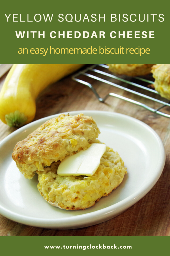 Yellow Squash Biscuits with Cheddar Cheese an easy homemade biscuit recipe an easy homemade biscuit recipe