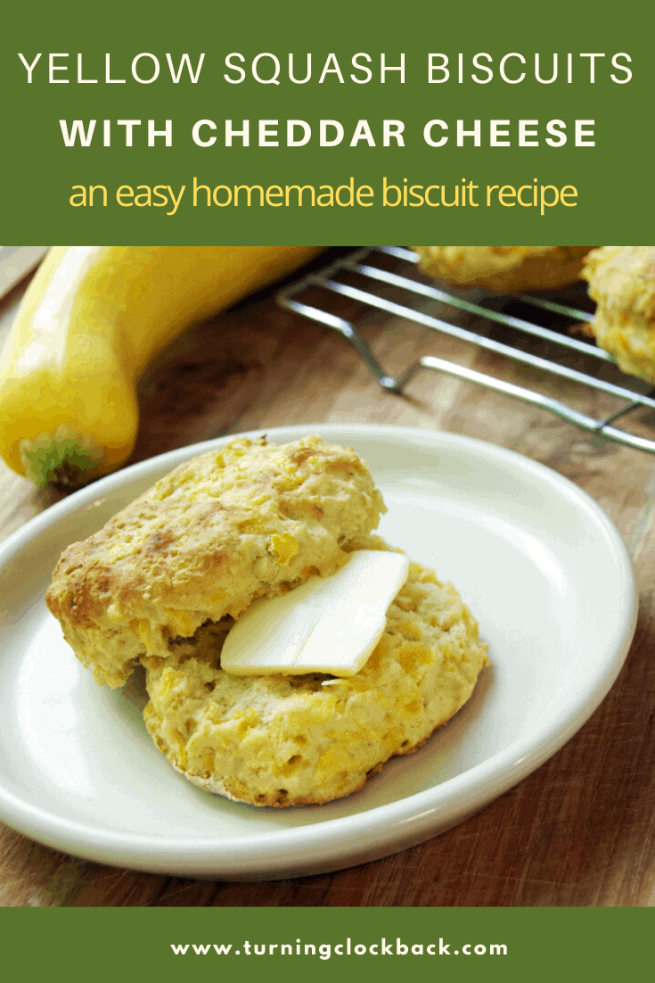 Yellow Squash Biscuits with Cheddar Cheese an easy homemade biscuit recipe