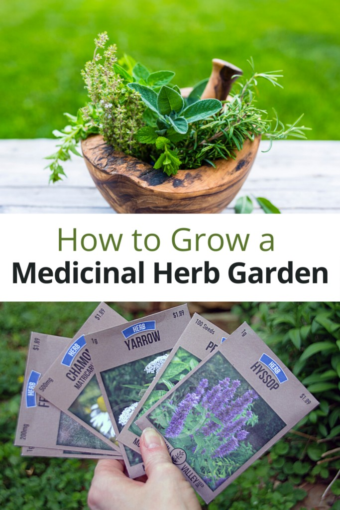 Medicinal herbs in wooden bowl and collection of seed packages with text overlay 'How to Grow a Medicinal Herb Garden'